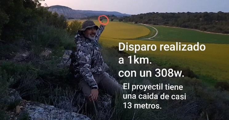 disparo a un corzo a un kilometro