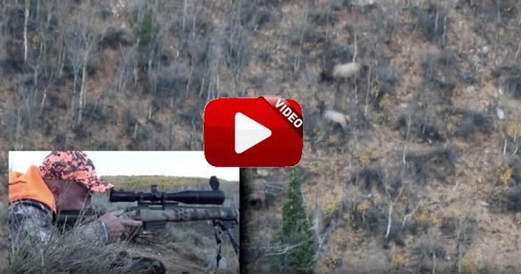 ¿Qué opinas de este disparo a casi un kilómetro de distancia con un .308 Winchester?