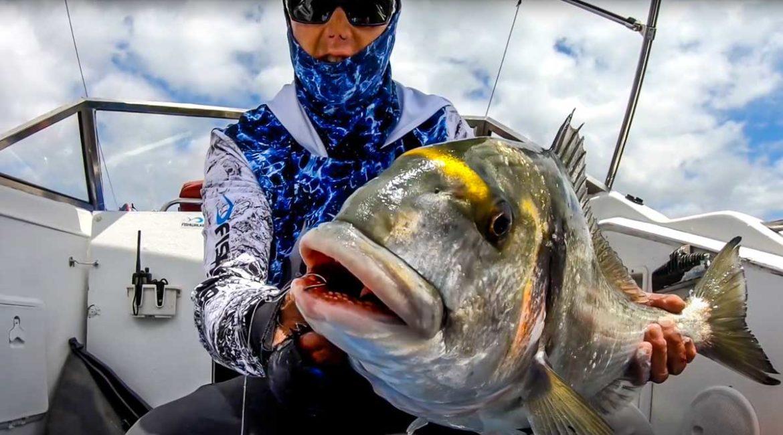 Los siete mejores cebos para pescar doradas gigantes