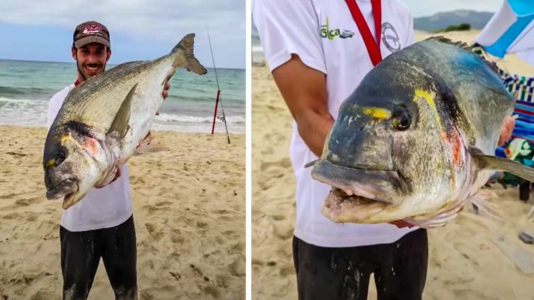 Josemari Alvarado con la enorme dorada que pescó a surfcasting.