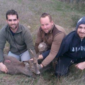 Cazadores salvan a un corzo unicornio enredado en un pastor eléctrico
