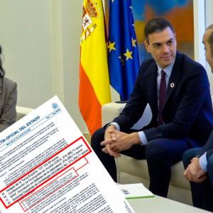 El BOE publica la subvención de casi un millón de euros públicos a los ecologistas