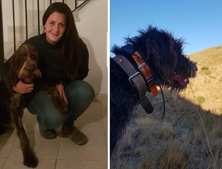 Envenenan y matan al perro de esta joven cazadora en Granada: «Nos han destrozado la vida»