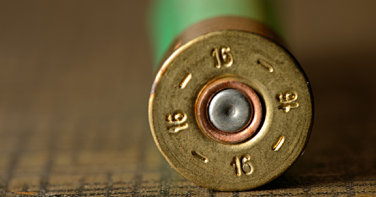 ¿Es cierto que las escopetas del 16 alcanzan más que las del 12?