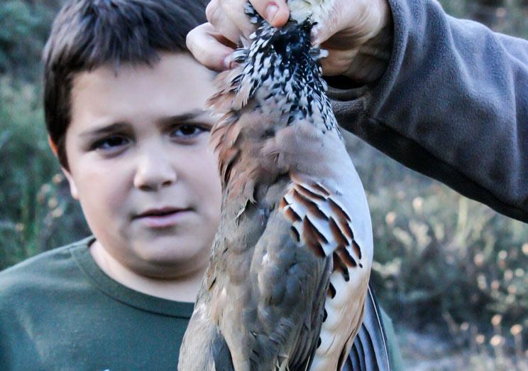 etica de caza