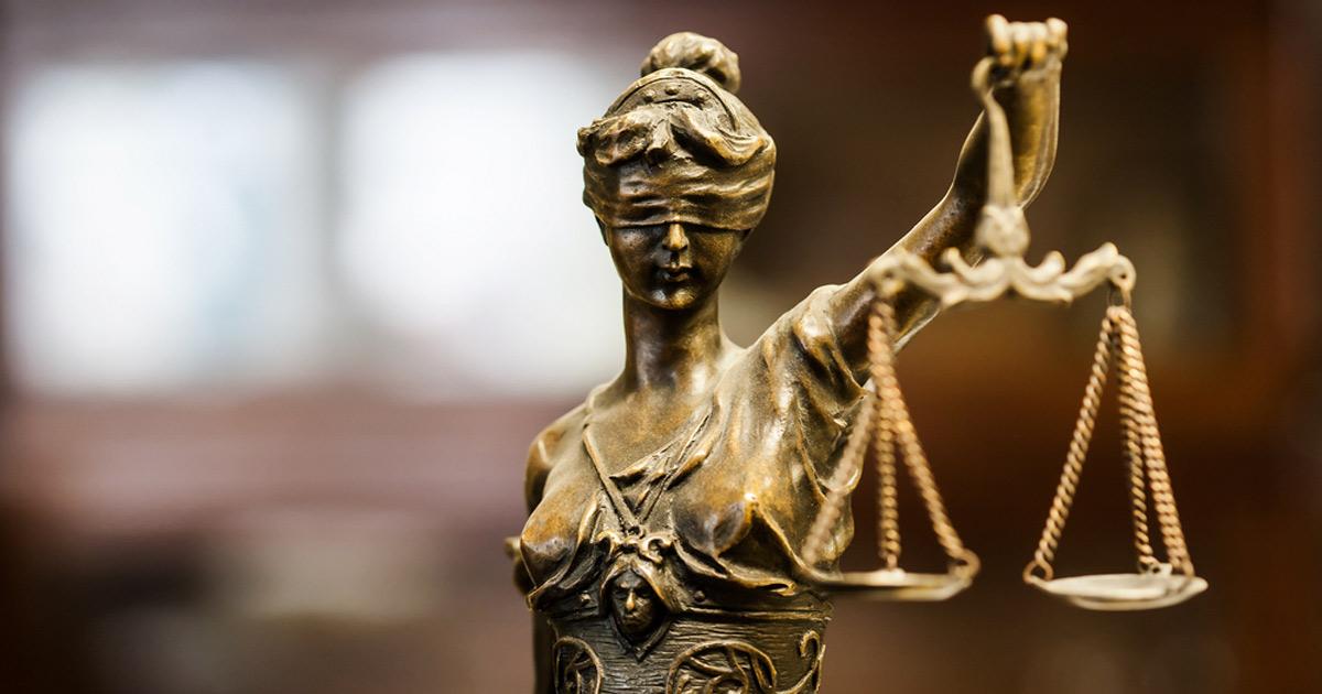 Cuatro casos de furtivos capturados de la forma más insólita