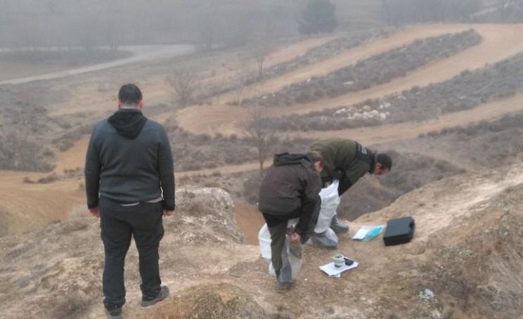 La RFEC pide al SEPRONA que investigue el origen de los cadáveres de perros aparecidos en una fosa en Tarancón