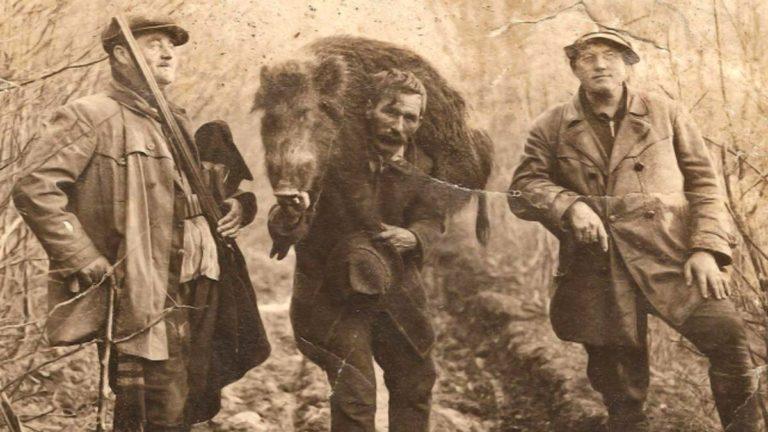 fotos antiguas de caza