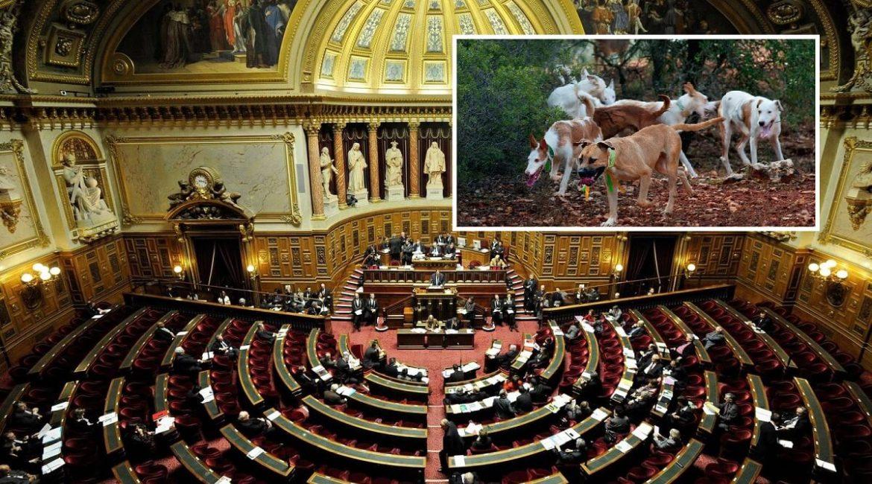 100 parlamentarios franceses firman un manifiesto del Movimiento Rural en favor de la caza