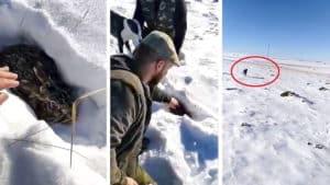 Se graban furtiveando una liebre en la nieve y los cazadores hacen un llamamiento para localizarlos