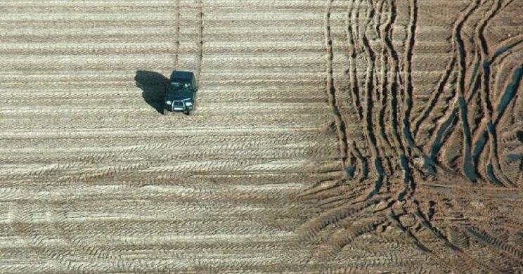 Los furtivos destrozaron cultivos en su huida. / Ical