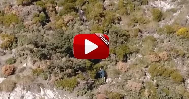 Dos furtivos tratan de huir ocultándose entre la vegetación cuando un helicóptero de la Guardia Civil les descubre
