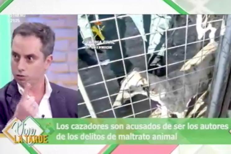 Guardia Civil y FEDEXCAZA desmontan en televisión el bulo de los 50.000 galgos abandonados