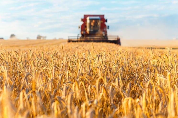 Muere un joven agricultor tras sufrir un golpe de calor en Córdoba