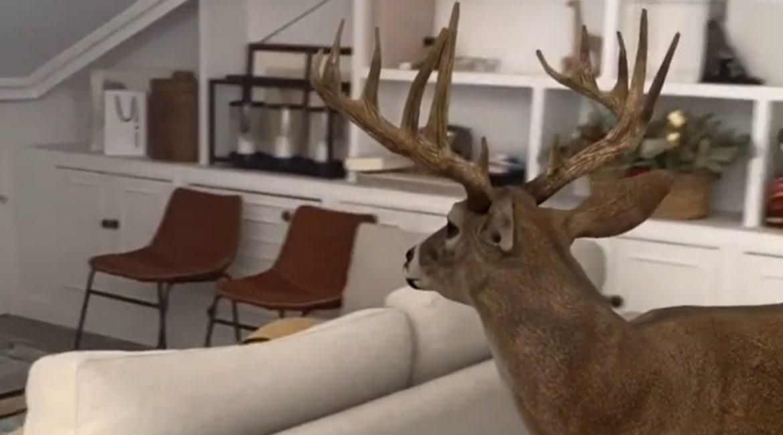 Pon un ciervo en tu salón: así es como Google llena tu casa de animales