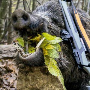 7 novedades de Solognac Decathlon para cazar en montería o batida que puedes comprar desde casa