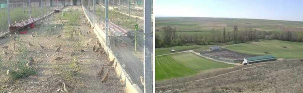 Instalaciones de la granja atacada por el FLA