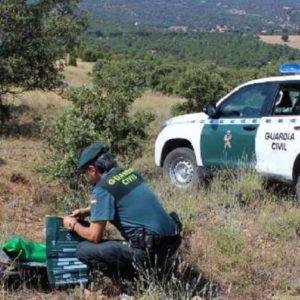 Investigado un veterinario como presunto autor de delitos relacionados con el furtivismo en Segovia