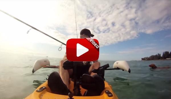 La increíble historia del pescador en kayak que encontró un perro en medio del mar