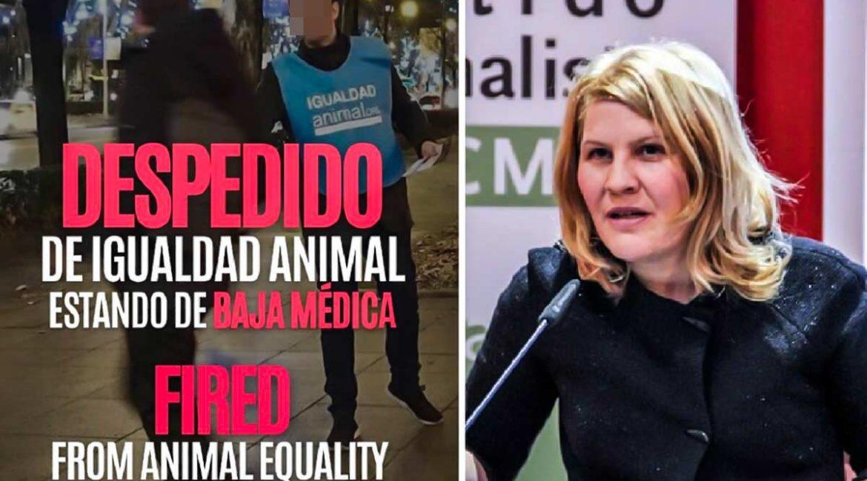 Acusan a la expresidenta de PACMA de despedir a un empleado de Igualdad Animal estando de baja