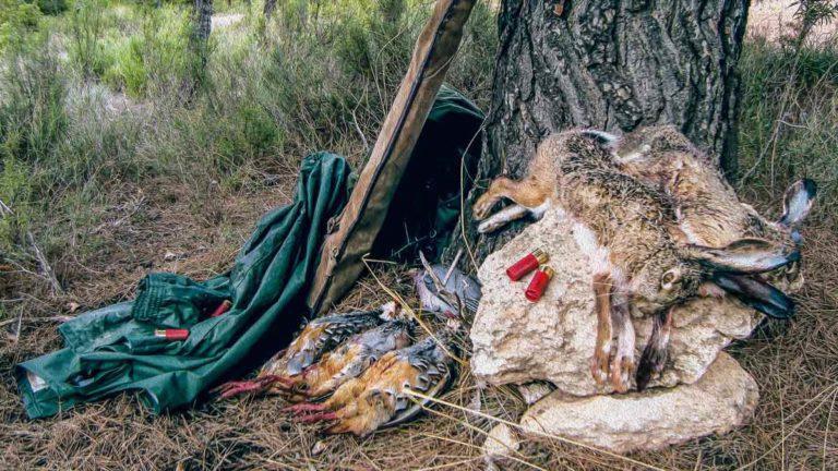 Ilustración de una percha de un cazador todorreno: liebre, perdiz y paloma torcaz. @JyS