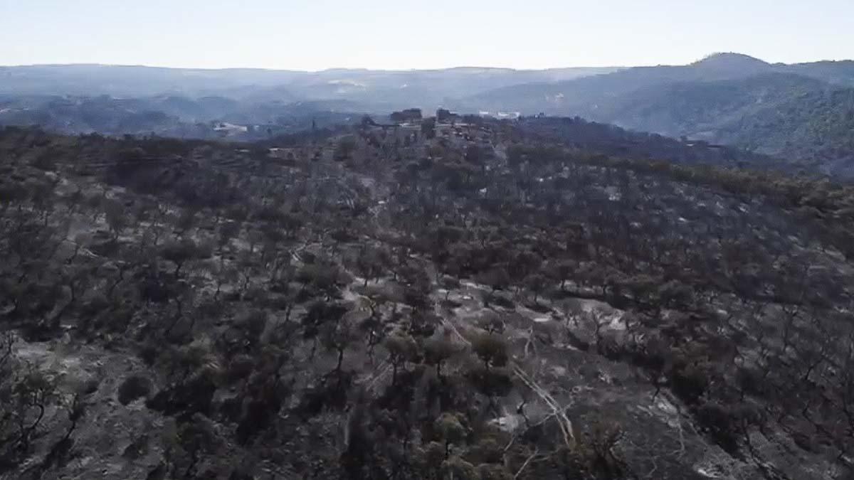 Graban con un dron las devastadoras consecuencias del incendio de Huelva