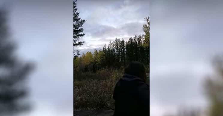 Unos cazadores graban un extraño y escalofriante aullido que se vuelve viral