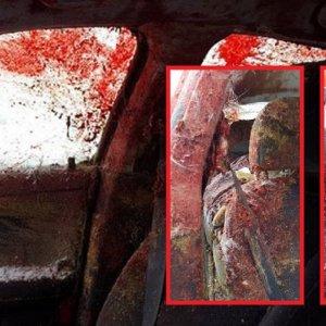 Estas 20 espeluznantes imágenes de un accidente provocado por un ciervo se vuelven virales