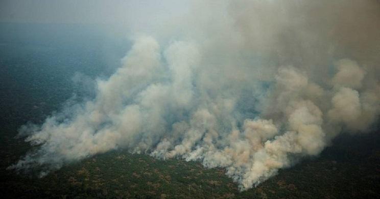 Detenidos cuatro ecologistas por provocar incendios en la Amazonia