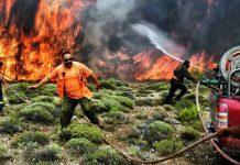 incendios grecia culpa ecologistas