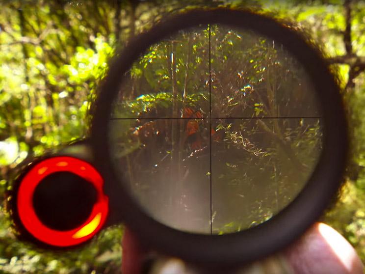 Imagen del IRIS HSL alertando de la presencia de un cazador