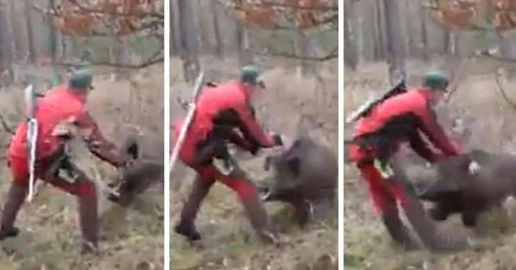 Un jabalí ataca brutalmente a un cazador que lleva el rifle descargado y a la espalda