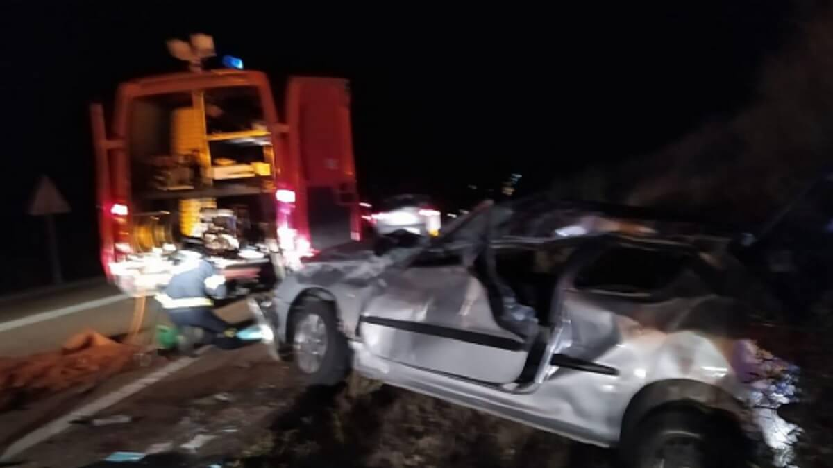 Muere en Zamora tras estrellar su coche contra una piara de jabalíes