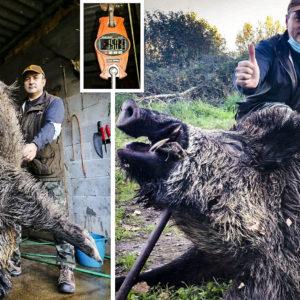 Caza un enorme jabalí de 150 kilos y 21 centímetros de colmillos que se lanzó herido a por él: «Venía a matarme»