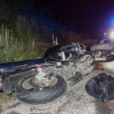 Un motorista se mata al chocar contra un jabalí