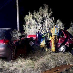 Un jabalí provoca un accidente en cadena y los bomberos tienen que rescatar a un conductor