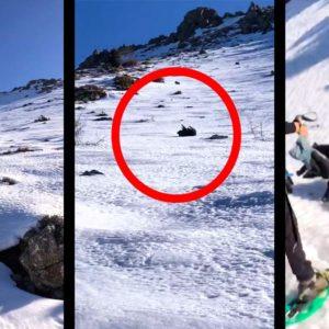 Un jabalí resbala en la nieve y ataca a dos personas