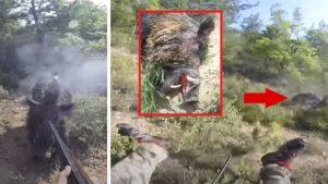 Un cazador tropieza y cae al suelo mientras le ataca un jabalí de enormes colmillos