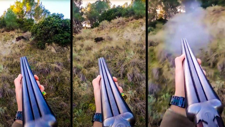 Tres instantes del disparo al jabalí. © YouTube