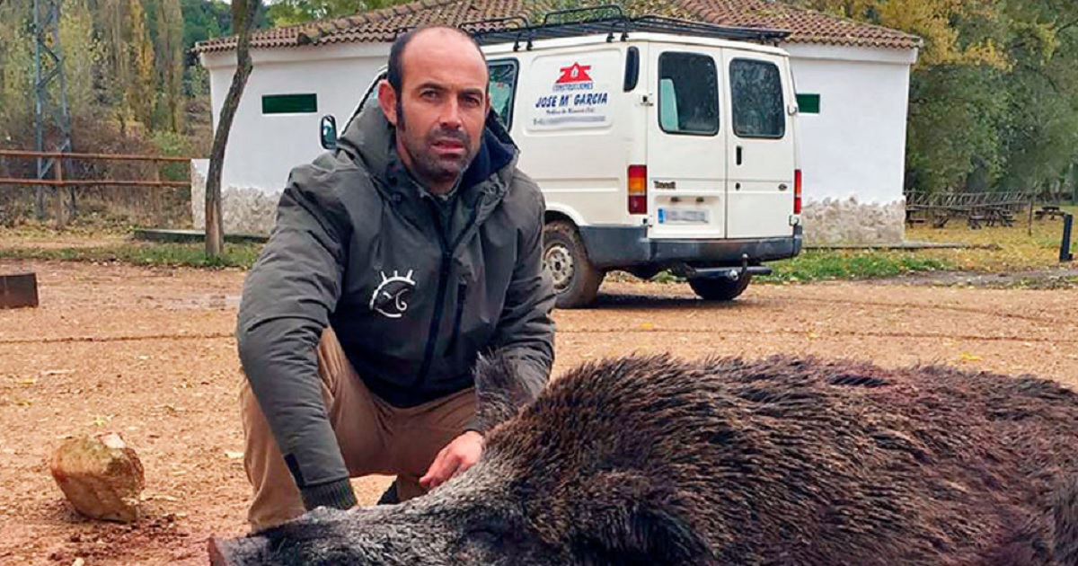 Un rehalero caza a cuchillo en Valladolid un monstruoso jabalí de 188 kilos