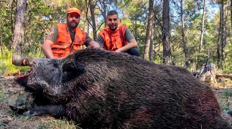 Caza un inmenso jabalí de 150 kilos y posible medalla de oro en Barcelona: «Era un tarugo, un monstruo con un aparato soñado»