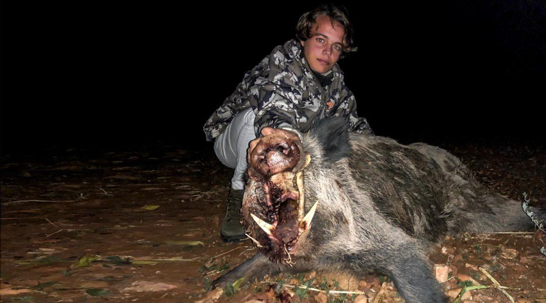 Va de espera, se encuentra a dos enormes jabalíes peleándose y caza a este monstruo