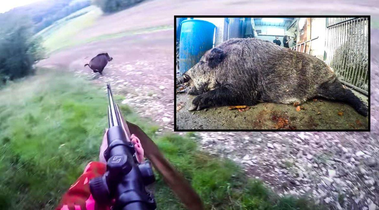 Una cazadora abate un jabalí de 143 kilos: el vídeo que ya han visto 250.000 personas