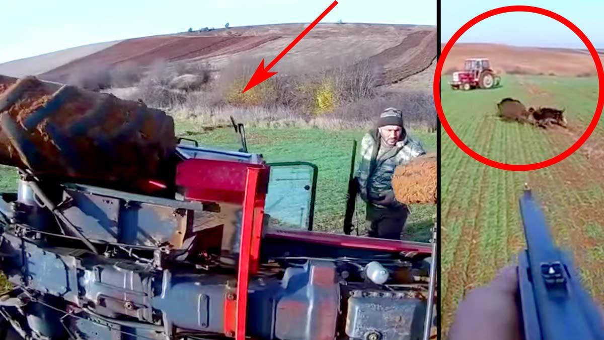 Vuelcan un tractor intentando dar caza a un descomunal jabalí en una siembra