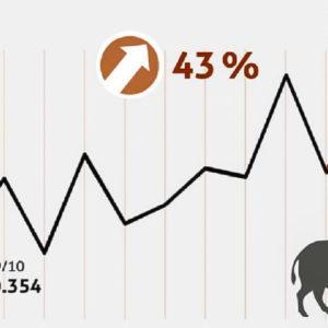 Alemania bate el récord de jabalíes cazados para frenar la PPA: 856.000