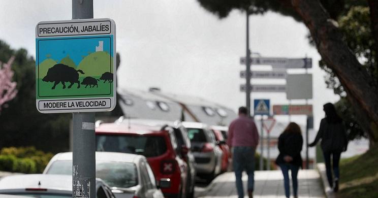 Carteles informativos colocados por el ayuntamiento de Torrelodones. / Uly Martín-El País