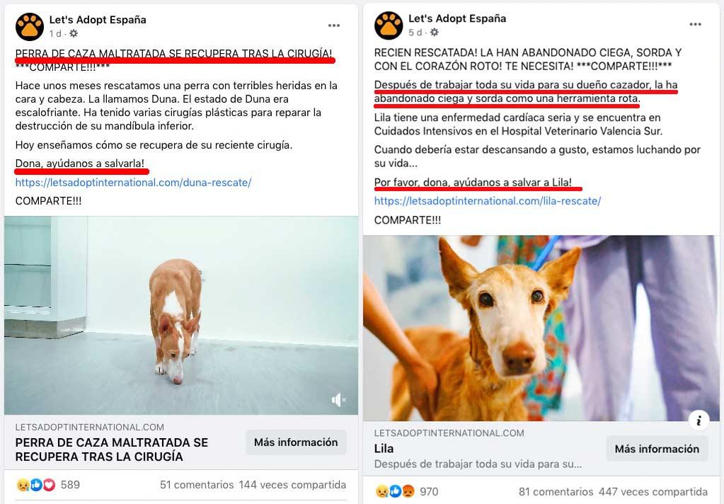 Imágenes mostradas en la página de Facebook de Let's Adopt España horas antes de ser eliminada.