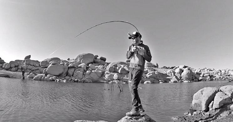 lineas de pesca.