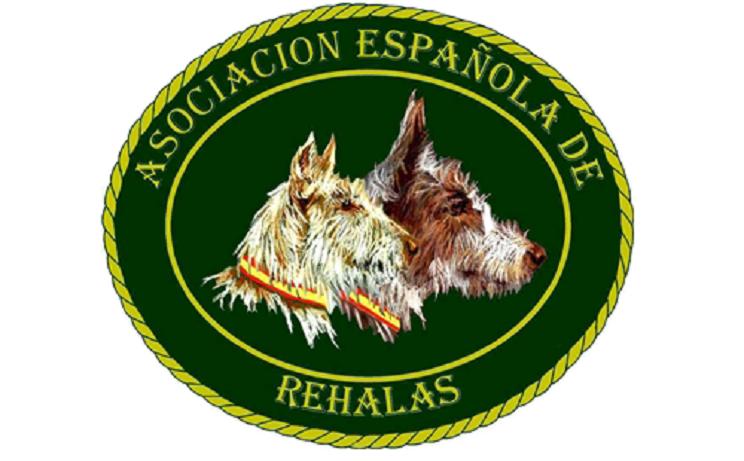 Publicado el instrumento de ratificación del Convenio Europeo de protección de Animales