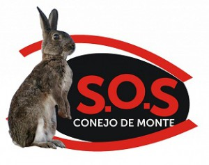 SOS CONEJO DE MONTE